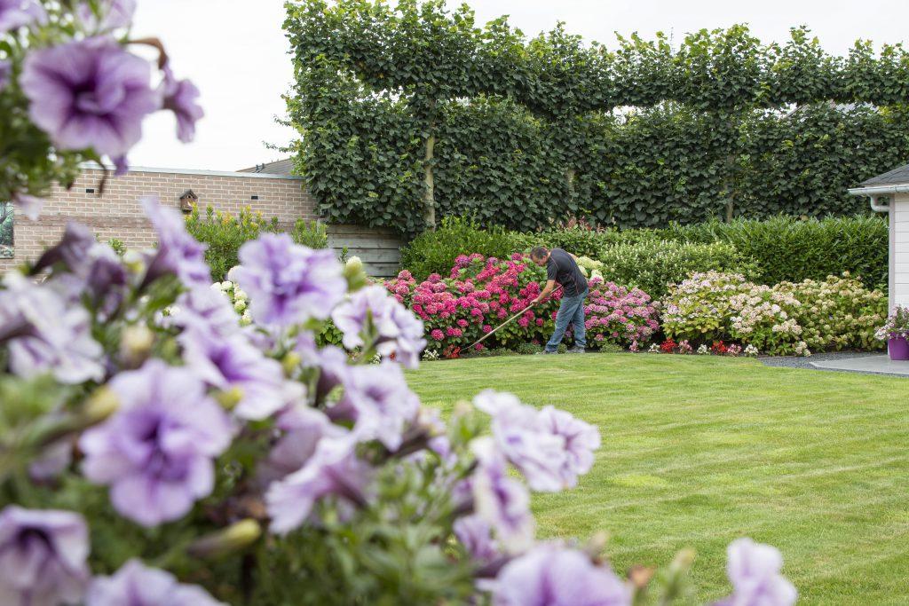 Tuin-Onderhoud-Luiten-Hoveniers