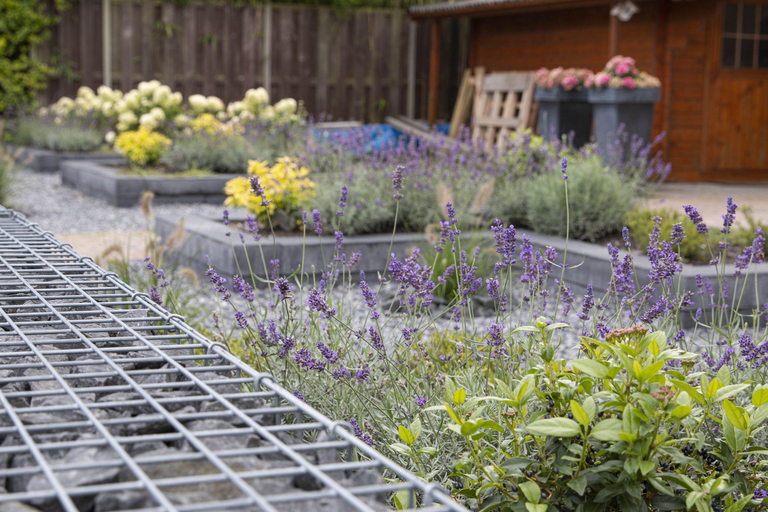 Tuin-Aanleg-Luiten-Hoveniers