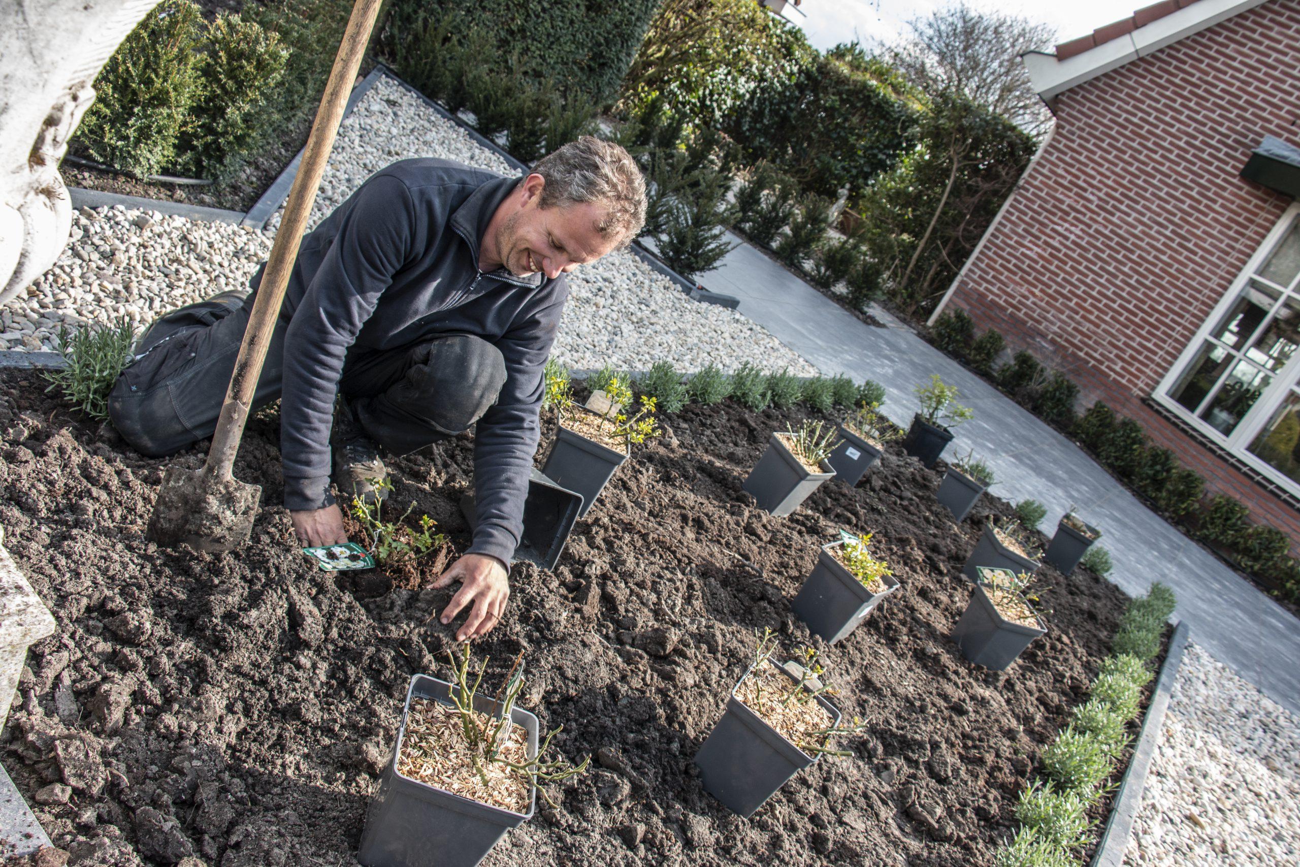 Tuin-aanleg-Tuinaanleg-Hoveniers-Zeeland-Goed-Luiten-Hoveniers-Tuinen-Onderhoud